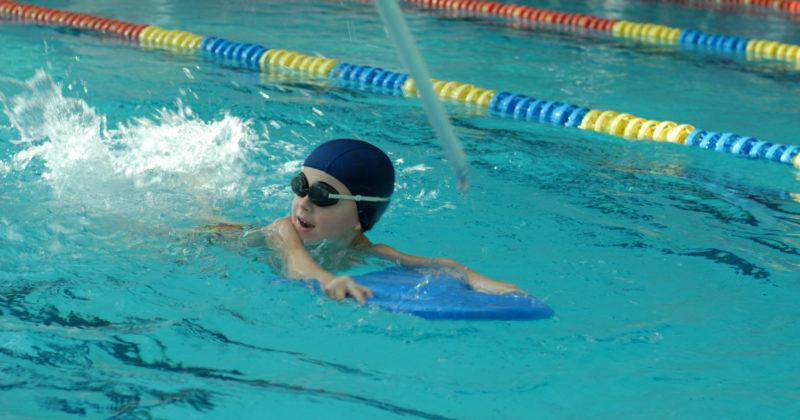 Nauka pływania – sekcje i zajęcia – grafik 2019-2020